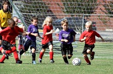 La iniciación deportiva en el niño: El niño y el deporte (2).